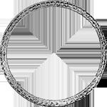 Umrandung Silber Münze Spezies Konventions Taler 1808